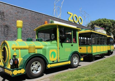 Zoo Stadtrundfahrt Bimmelbahn